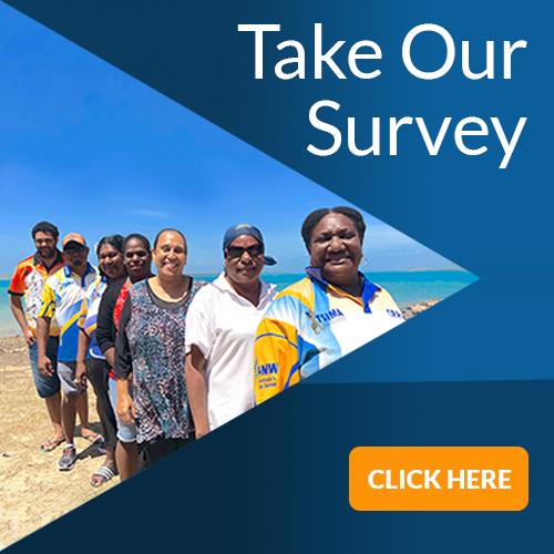 TSIMA Survey